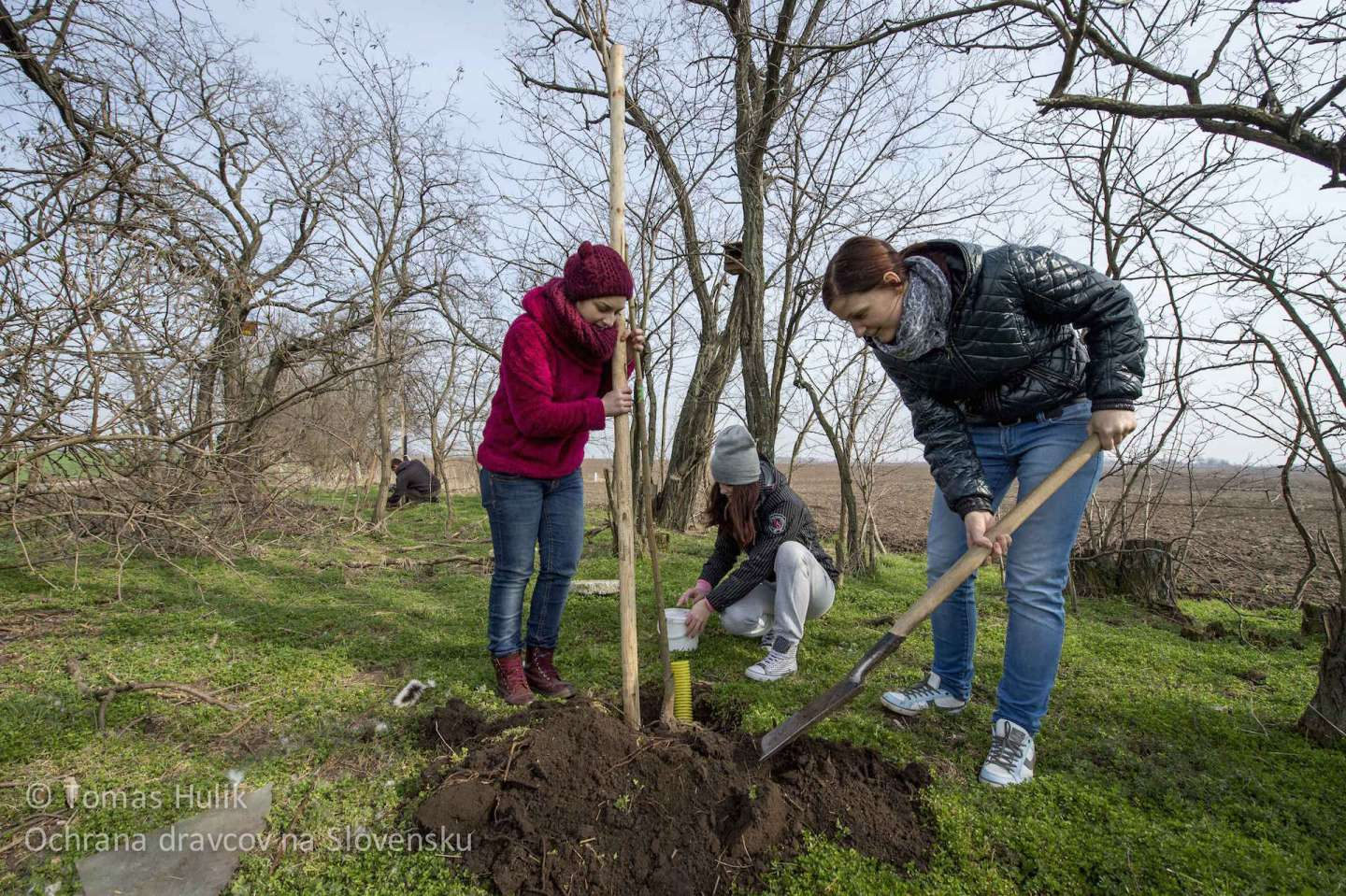 Students from University in Nitra will donate five days to the Earth